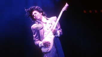 Prince Siblings in Court in 1st Estate Hearing