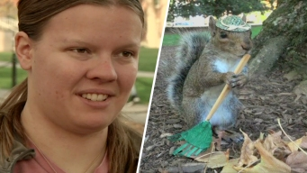 Hat-Wearing Penn State Critters Go Nuts for 'Squirrel Girl'