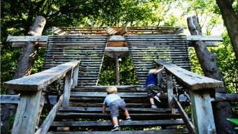 Spotlight! Tyler Arboretum's Tree House Festival