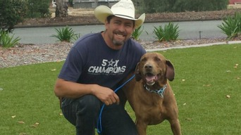 Missing Lab Found 720 Miles Away Reunited With Owner 3 Years Later