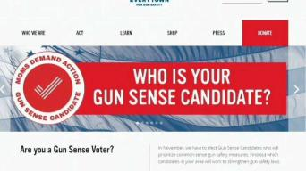 Gun Violence Prevention Group Weighs in on Congressional Race