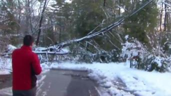 Downed Trees, Wires Block Roads, Knock Out Power in Burlington County