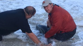 Watch NBC's Kerry Sanders Help Rescue a Baby Dolphin