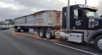 Unfortunate Truck Spills: Chicken Parts
