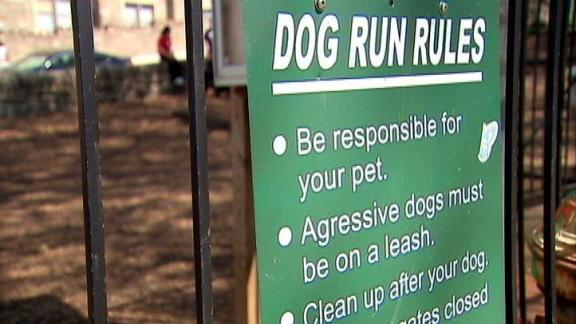 Dawn's Pet Project: Dog Park Safety