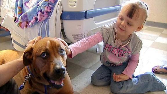 3-Legged Pooch Brings Happiness to Sick Kids