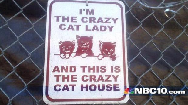 [PHI] Hundreds of Cats Removed from Frankford House