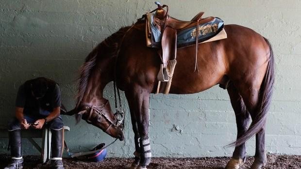 [NATL] Top News Photos: Santa Anita Horse Racing Season Closes with Controversy, and More