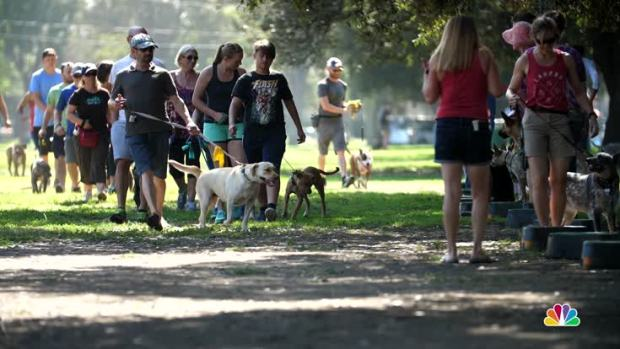 [NATL-LA] Non-Profit Offers Training, Community for Pit Bull Owners