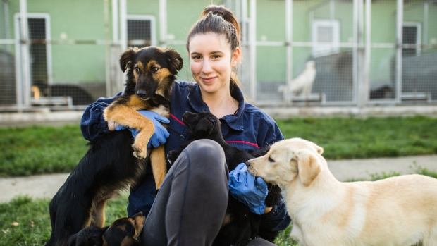 [NATL] How You Can Help a Shelter Even If You Can't Adopt