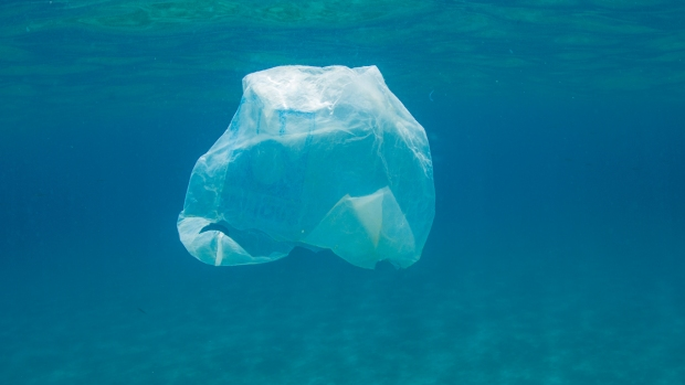 [PHI] Jersey Shore Town Puts End to Plastic Bag Use