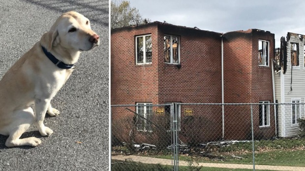 Remains of 2 residents found after senior center fire