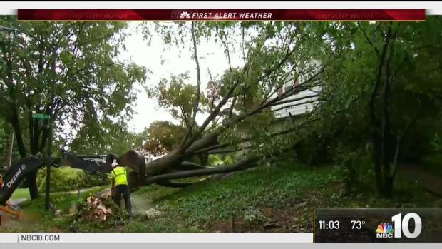 Severe Storms Topple Trees in Pennsylvania