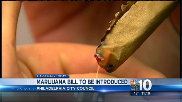 [PHI] Councilman to Introduce Marijuana Law