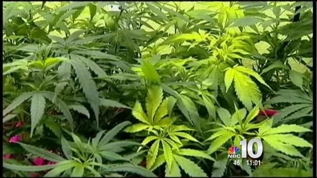 [PHI] Marijuana Law Debate in Philly