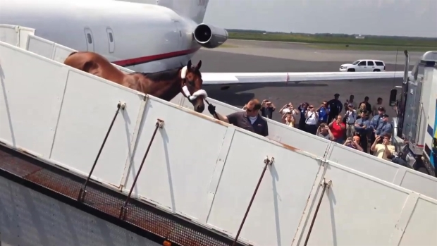 [PHI] RAW VIDEO: American Pharoah Walks Off Plane in AC