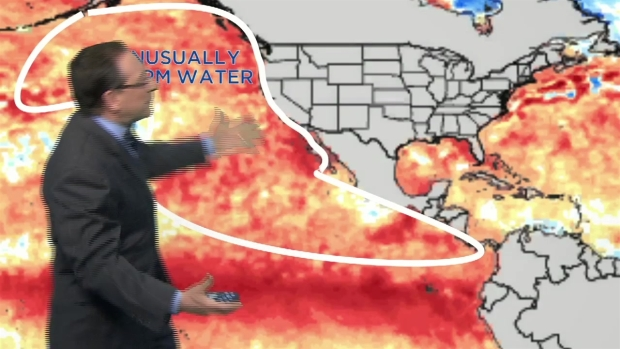 "Glenn ""Hurricane"" Schwartz: What the Pacific Blob Will Mean for Us"