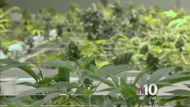 [PHI] Medical Marijuana Becomes Legal in Pennsylvania