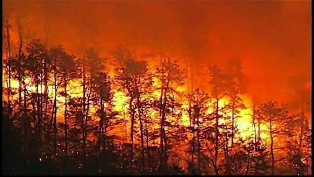 Wildfire Burns in NJ State Park