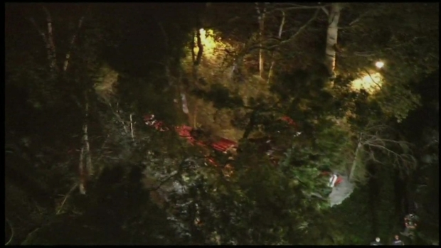 Pilot Survives After Small Plane Crashes in Eagleswood