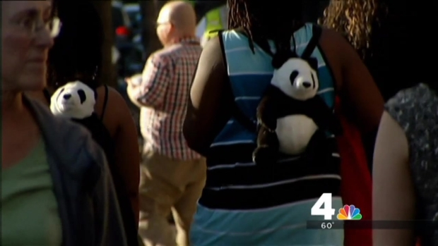 [DC] Police Search for Motive in Shooting Outside National Zoo