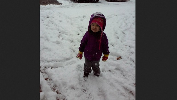 [PHI GALLERY]Your January Snow Photos