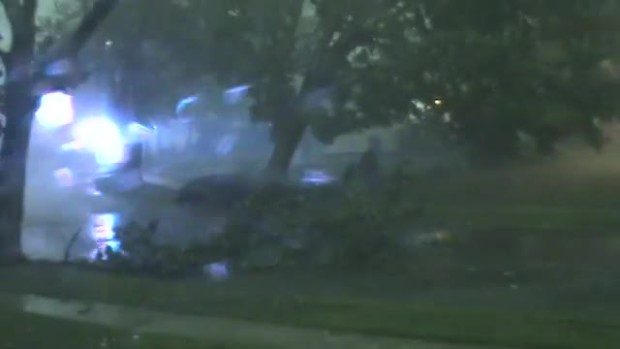 WATCH: Storm Topples Tree in Maple Shade