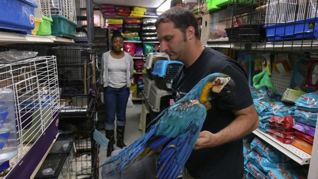 A Day in the Life of an Animal Rescuer