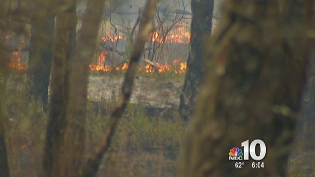 [PHI] Forest Fire in Wharton State Forest