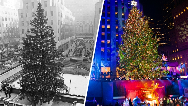 rockefeller centers 75 foot christmas tree arrives in new york city
