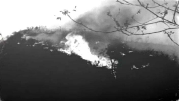 From the Archives:The Flames and Destruction of the Bel Air Fire