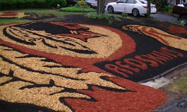 Redskins Fan Dedicates Yard to Team
