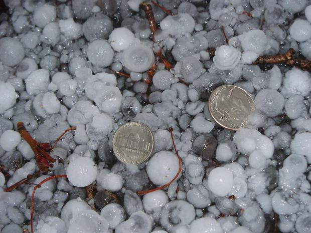 Your Pictures: Hail Madness