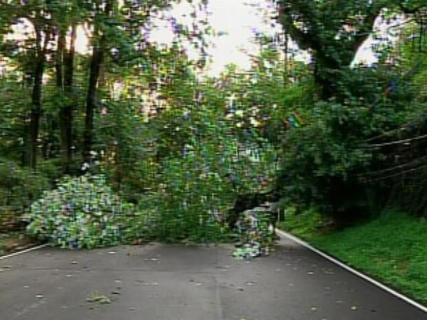 [PHI] Widespread Damage Leaves Residents Stunned