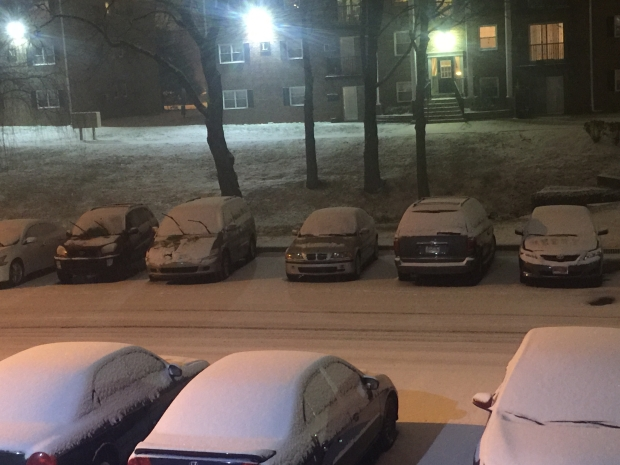 YOUR PHOTOS: January Snowstorm