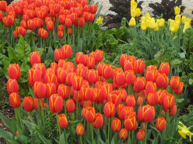 Spring into Philadelphia
