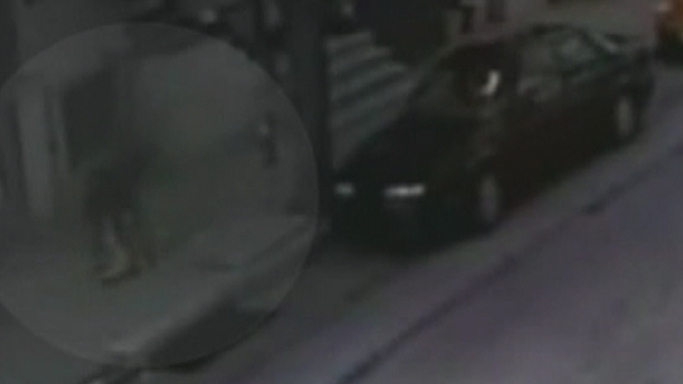 [PHI] Attempted Abduction Caught on Camera