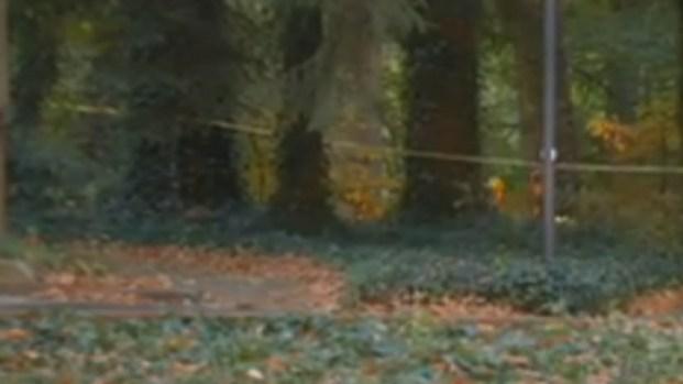 [PHI] Deadly Mystery in Haddonfield