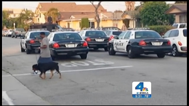 [LA] Dog Lovers Lashing Out Against Hawthorne PD for Dog Shooting