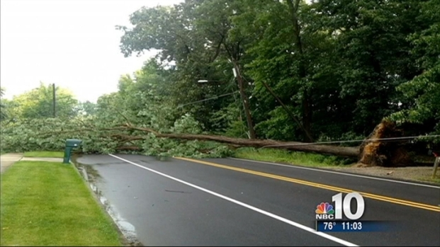 [PHI] Powerful Storms Topple Trees in South Jersey