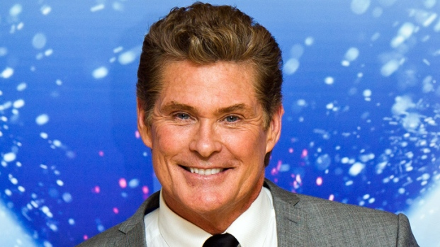 """David Hasselhoff's """"Entertainer's Paradise"""" For Sale"""