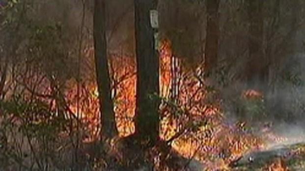[PHI] Warden Calling NJ Forest Fire Suspicious