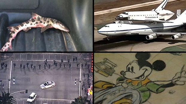 Top 15 Most-Clicked NBCLA.com Stories of 2012