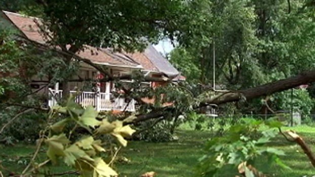 [PHI] Tornado Confirmed in Camden County