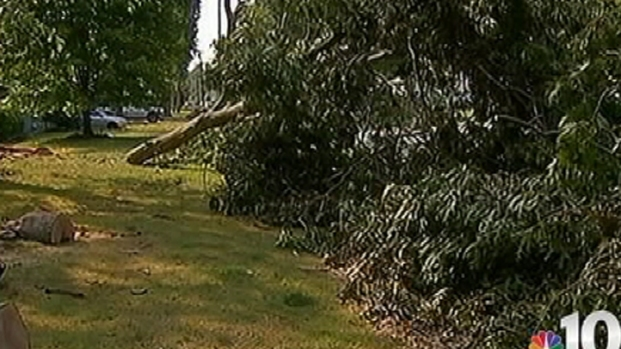 [PHI] Cleanup in Galloway Township