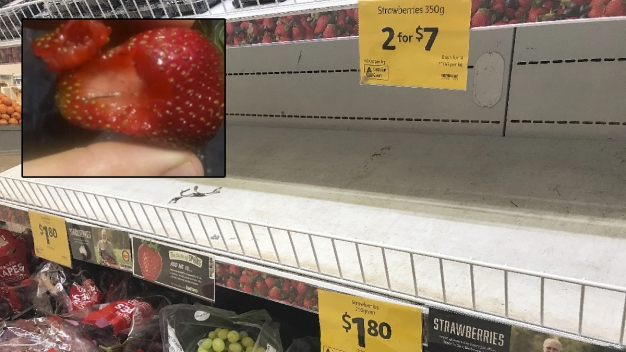 Needles in Strawberries Spark Massive Recalls in Australia