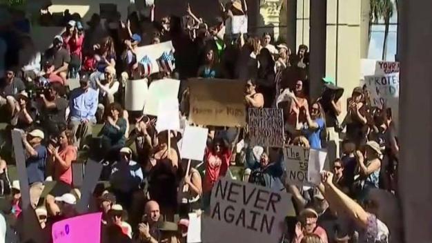 Florida High School Massacre Reignites Gun Debate