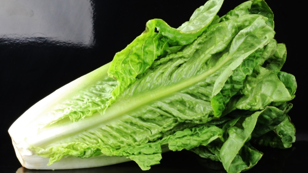 'Do Not Eat Any Romaine Lettuce': CDC