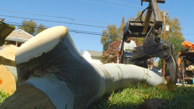Post-Storm Cleanup Continues in Montgomery County