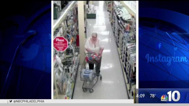 Police Search for Craft Supply Thief
